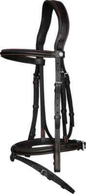 Ergonomic Hunter/Jumper bridle